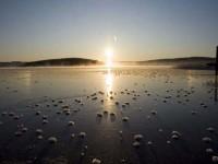 Subparhelia on ice from fallen crystals