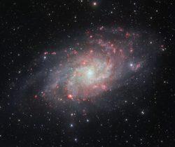 Kolmion galaksi (M33) on Linnunradan ja Andromedan suuri seuralainen paikallisessa galaksiryhmässä. Se on yksi niistä galakseista, joissa tähtien ja kaasupilvien kiertoliikkeen on havaittu kasvavan ulko-osissa. Pimeän aineen massa sitä siellä kiihdyttelee menemään. Kuten viime viikolla jo mainittiin spiraalihaarojen syntymekanismia käsitellessä, tällaiset repaleiset galaksit saattavat syntyä sen seurauksena, että niitä ympäröi poikkeuksellisen tukeva pilvi pimeää ainetta ja tämän perusteella näin tosiaan näyttäisi olevan. Kuva ESO