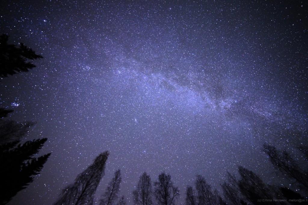 Linnunrata levittäytyy uli taivaan. Linnunradan ja puiden latvojen välissä erottuu yksinäisenä läiskänä myös Andromedan galaksi.