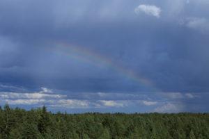 Kahdentunut sateenkaari, Marko Haapala