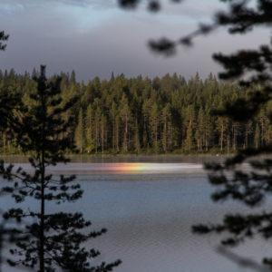 Kastekaari, Markku Ruonala