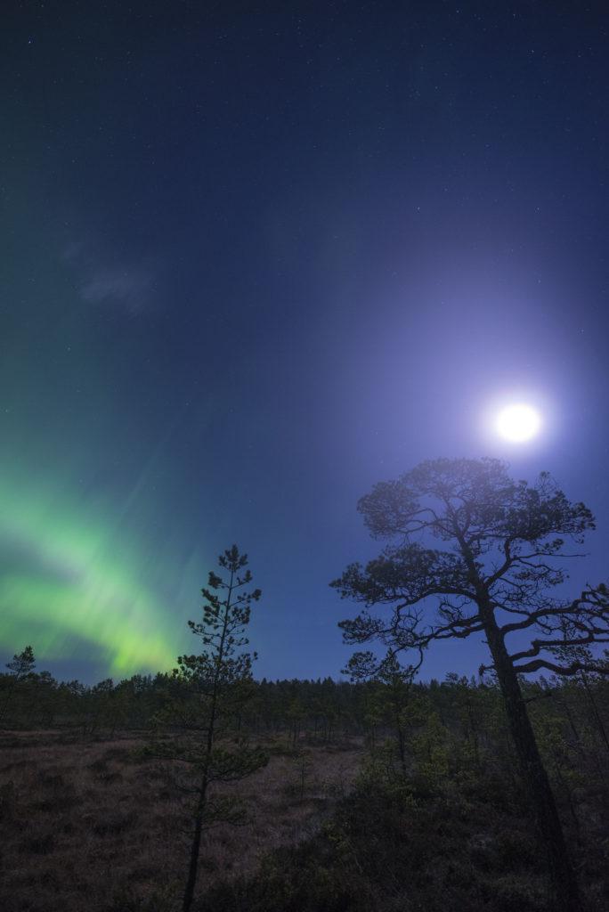 Kosteuden tiivistyminen etulinssille aiheuttaa hunnun kuun ympärille