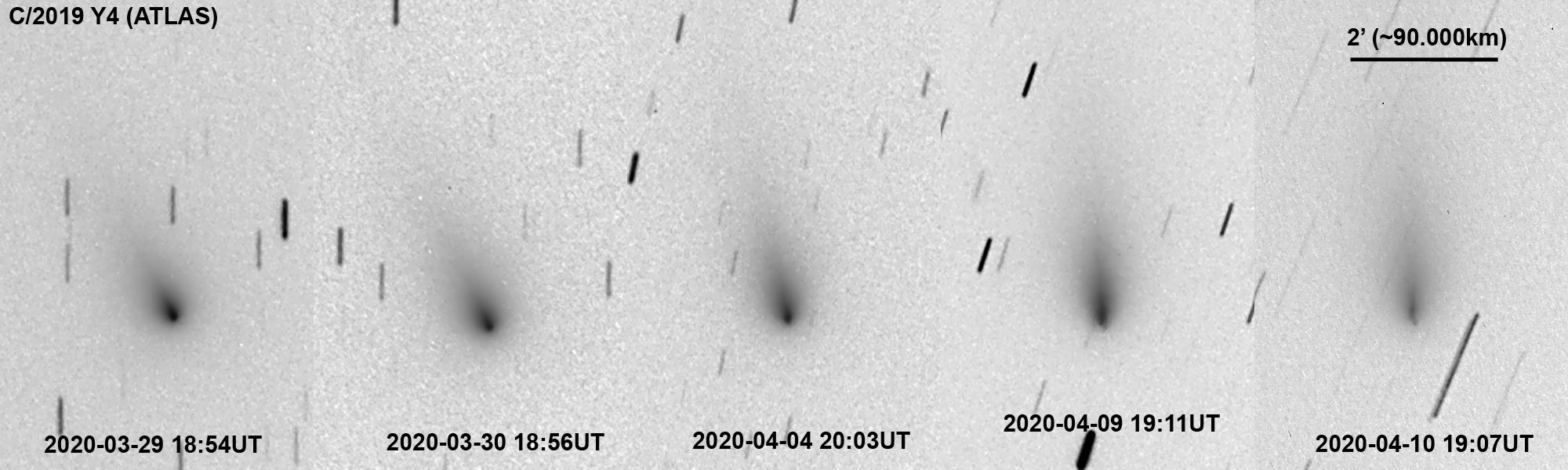 C/2019 Y4 (ATLAS), 29.03.-10.04.20, Ryske