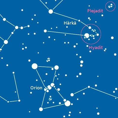 Härkä Tähtikuvio
